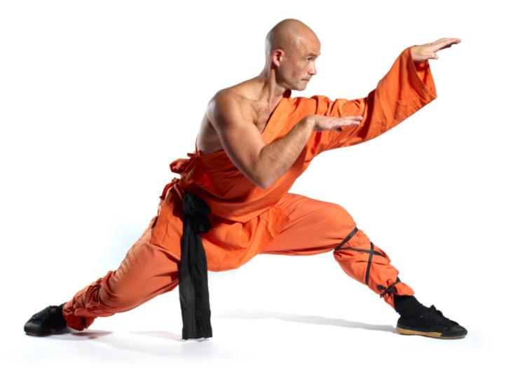 como aprender kung fu sozinho
